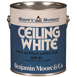 258 Ceiling White Muresco®