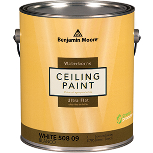 508 Ultra Flat Ceiling Paint