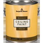 508 celling paint