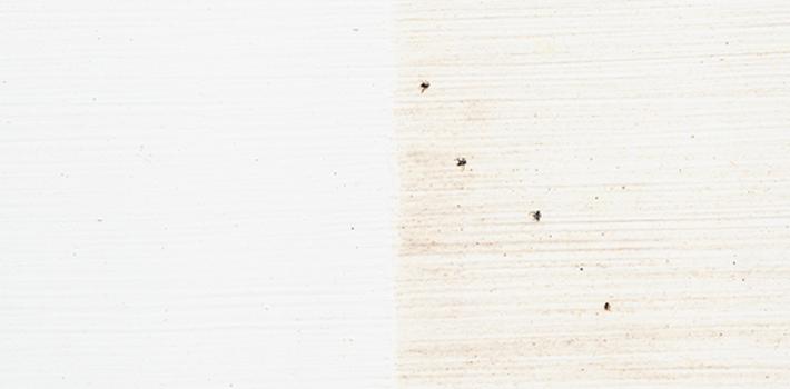 Просачивание древесного красителя
